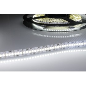 Tira de led flexible de 5 metros SMD 3528 240 led / m Blanco Frío 6000 / 6500 K 10 mm IP65 (en tubo de silicona)
