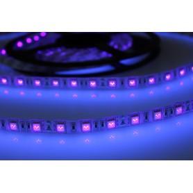 Tira de led ultravioleta luz negra flexible 5 metros SMD 5050 60 LED / metro 12v protección IP65