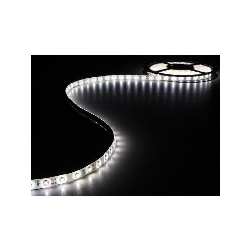 Tira de led flexible de 5 metros SMD 3528 60 led / m Blanco Frío 6000 / 6500 K protección IP65